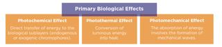 biological effects of laser.png